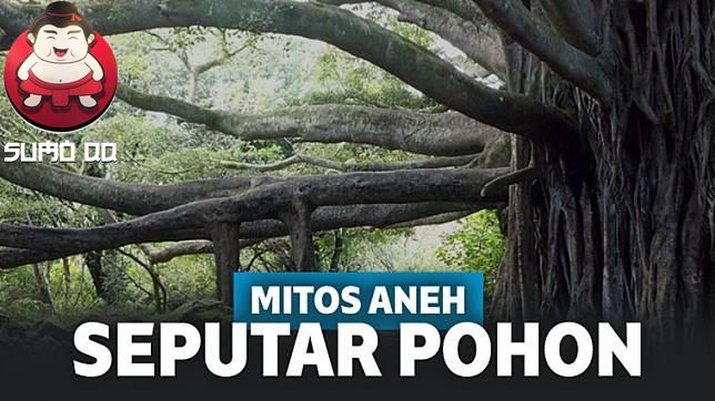 Mitos Aneh Seputar Pohon yang Diyakini Orang-Orang!