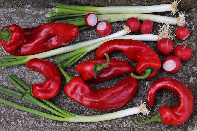 7 Makanan Superfood untuk Kulit Cantik