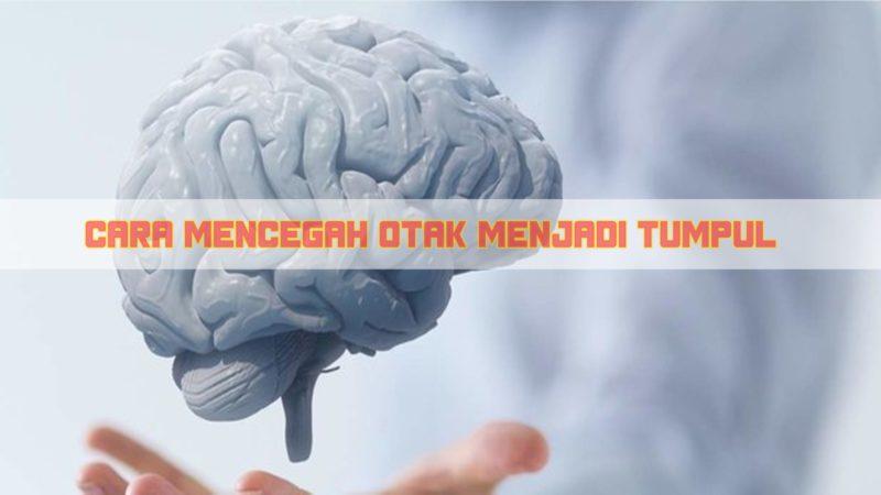 5 Cara Mencegah Otak Menjadi Tumpul