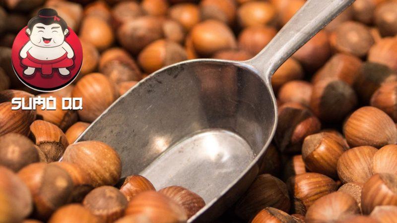 Manfaat Kacang Hazelnut untuk Kesehatan