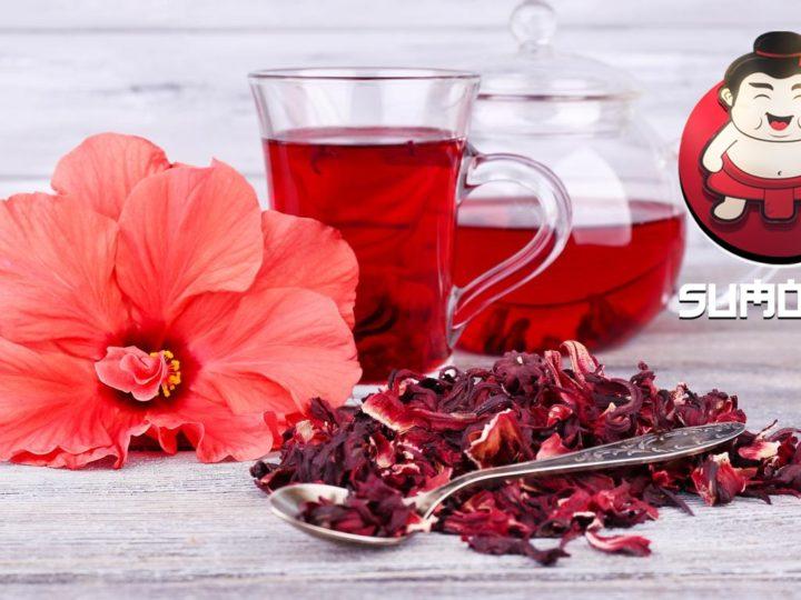 Manfaat Teh Hibiscus untuk Kesehatan Tubuh