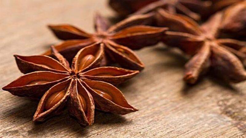 Tanaman Herbal Sangat Bermanfaat untuk Payudara