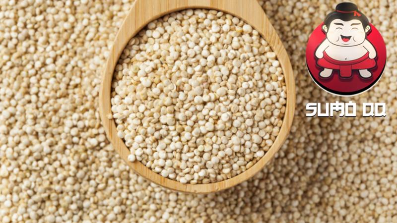 Manfaat Quinoa untuk Kesehatan