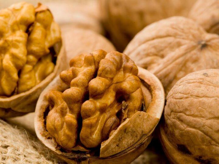Manfaat Kesehatan Kacang Kenari