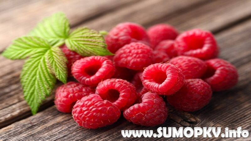 10 Manfaat Buah Raspberrry Untuk kesehatan