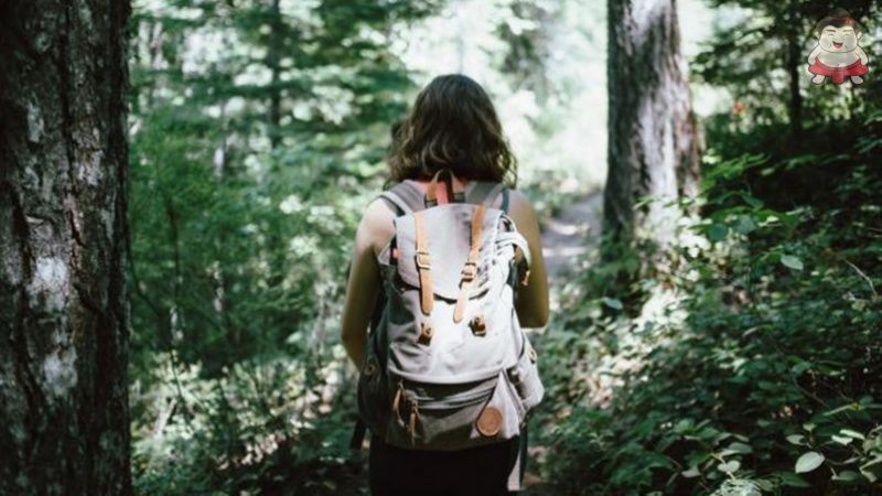 Hal Wajib Dilakukan saat Tersesat Ketika Pendakian